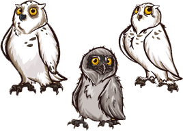 Snow owl png. Image zoomumba wiki fandom