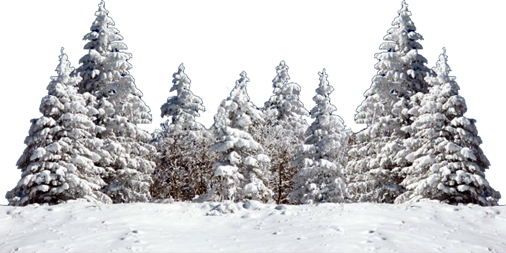Snow png transparent. Images of christmas tree