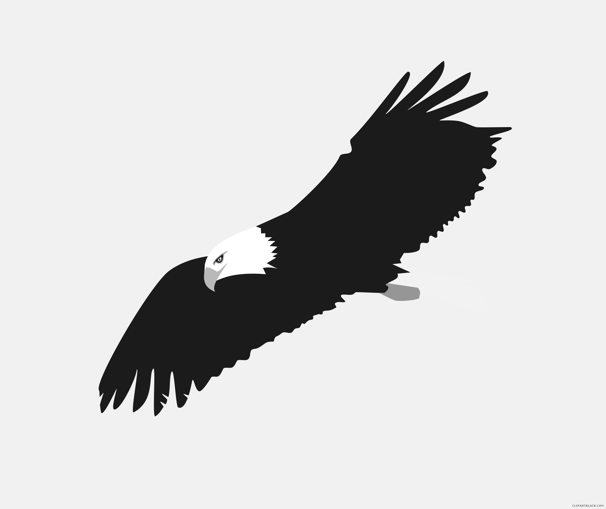 Soaring clipart outline. Eagle animal free black
