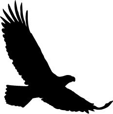 Soaring clipart outline. Large eagle for patterns