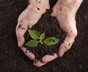 Soil clipart loamy soil. Kinds of the dirt