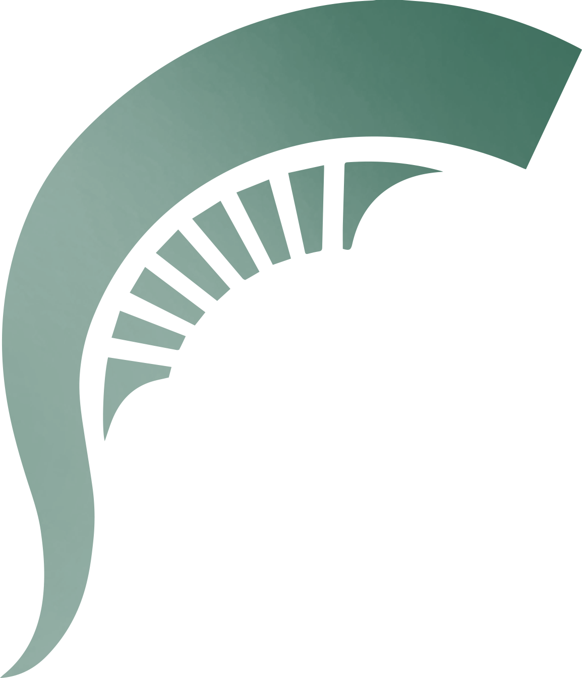 michigan state logo png
