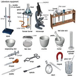 Spatula clipart laboratory apparatus. Items equipment exporter from