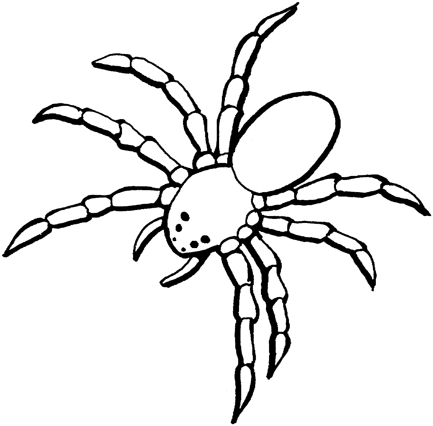 Spider clipart spide. New collection digital j