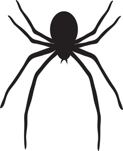 Spider clipart spide. Image picture panda free