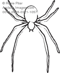 Outline stock photography acclaim. Spider clipart spider head svg transparent download