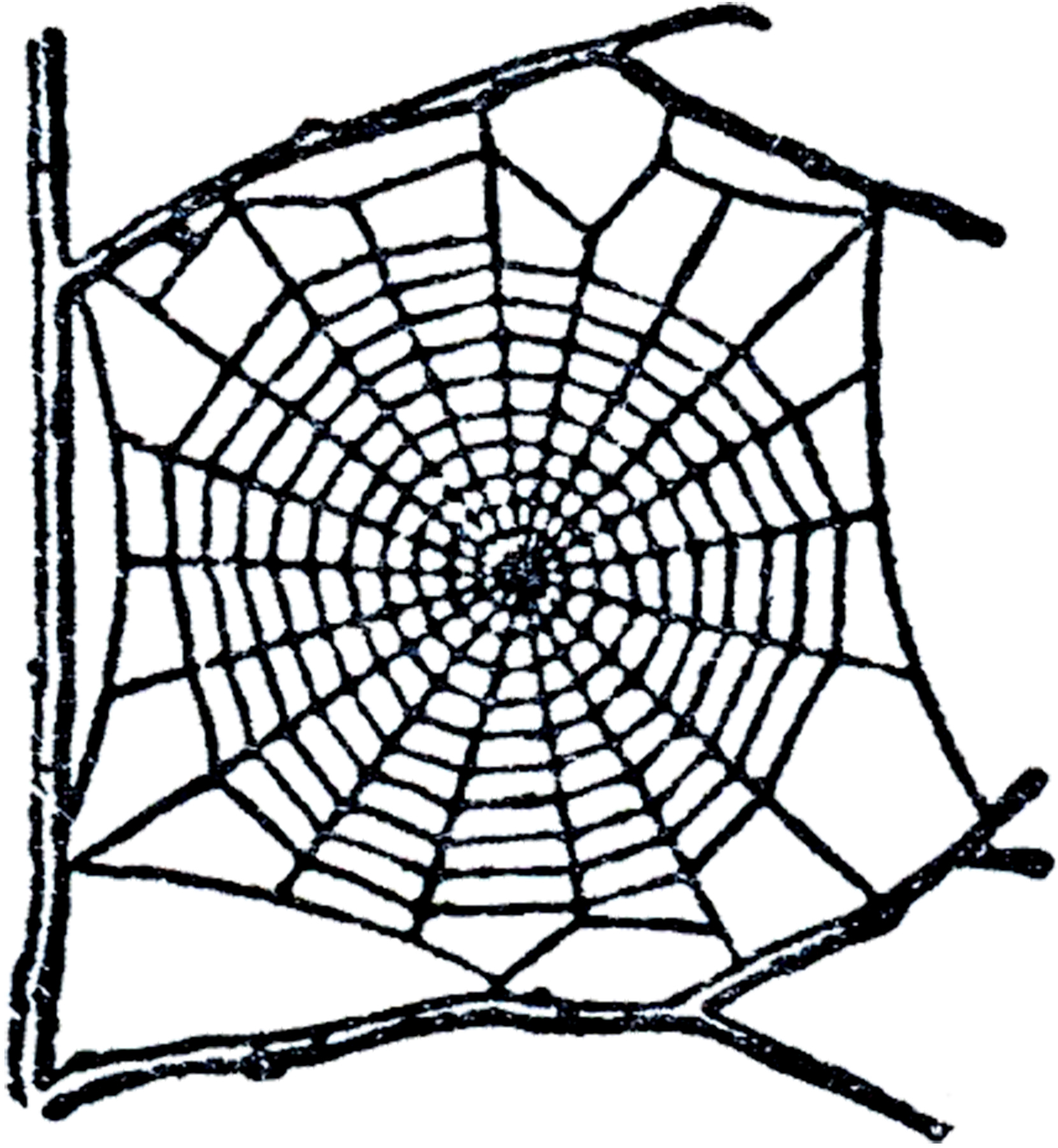 Spider clipart webclip. Free web clip art