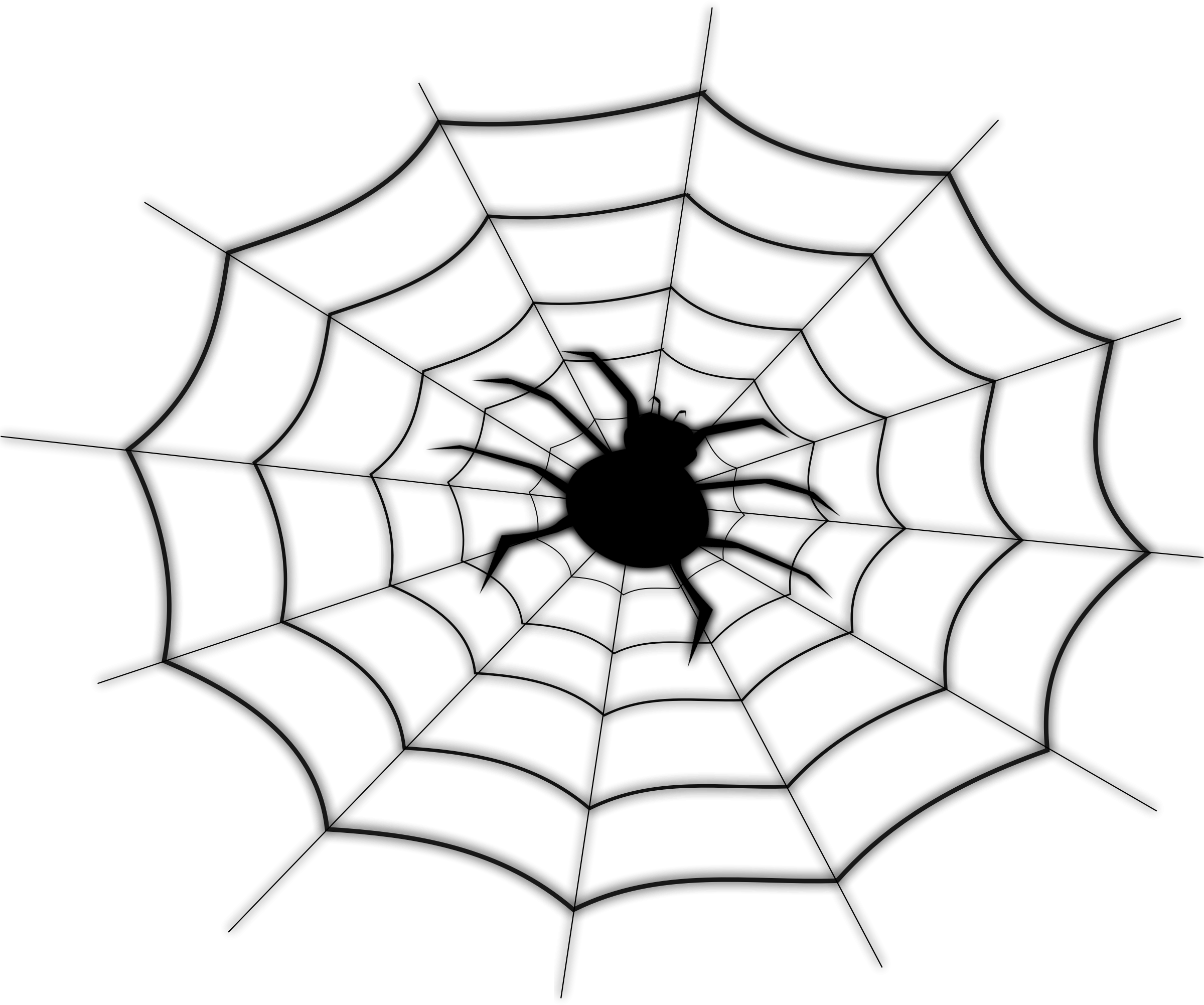 Drawing net. Spider on icons png