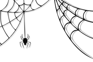 Spider web corner png transparent background. Spiders image related wallpapers