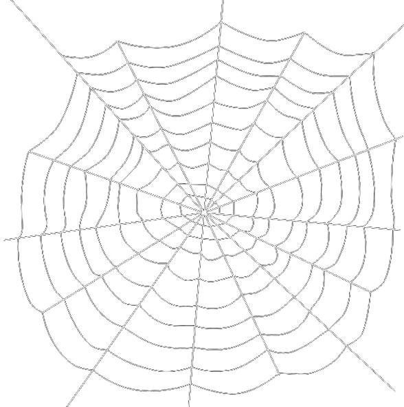 Spiders drawing dress. Web transparent background