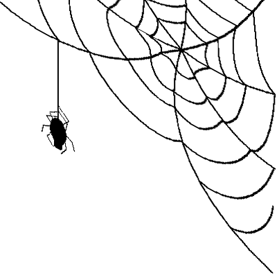 Corner spider web png. Free icons and backgrounds