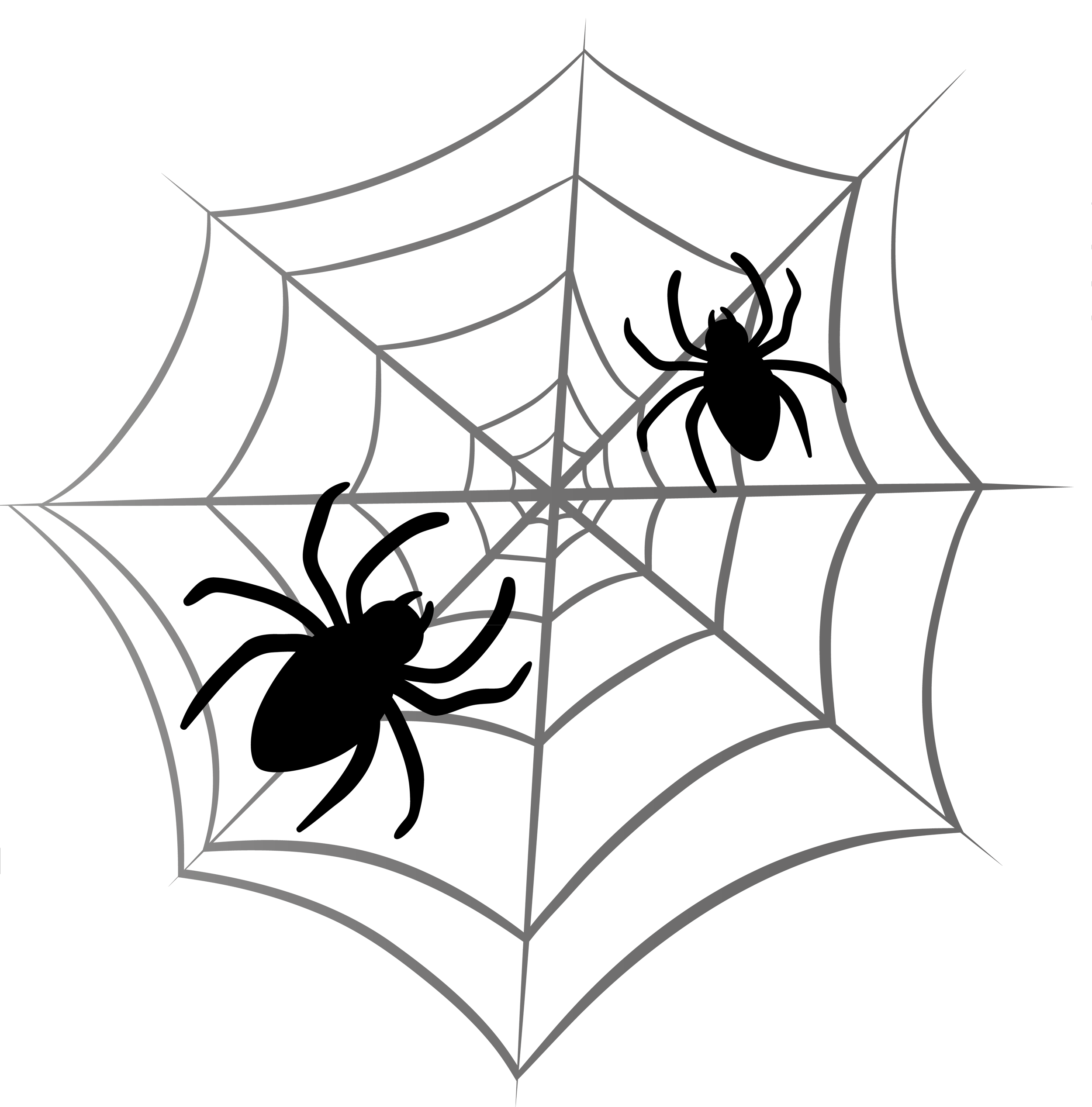 Spider web tattoo png. Halloween google search pinterest