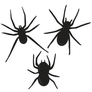 Spiders clipart svg. Best miss kate