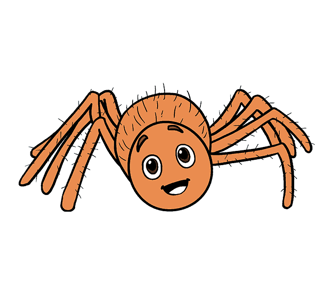 Spiders drawing cartoon. How to draw a