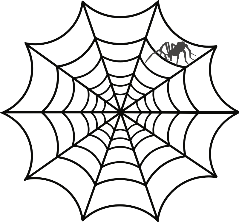 Spiderweb white png. Spider web drawing clip