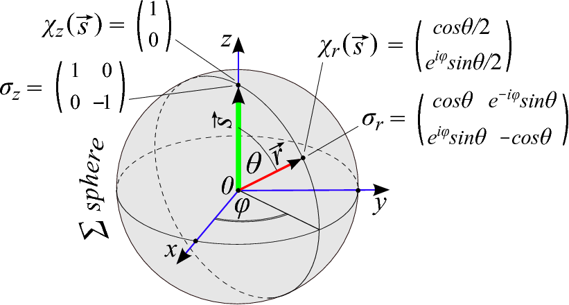 Spin vector circel. Right sign of rotation