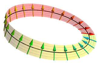 Spin vector circle ring. Spinor wikipedia a visualized