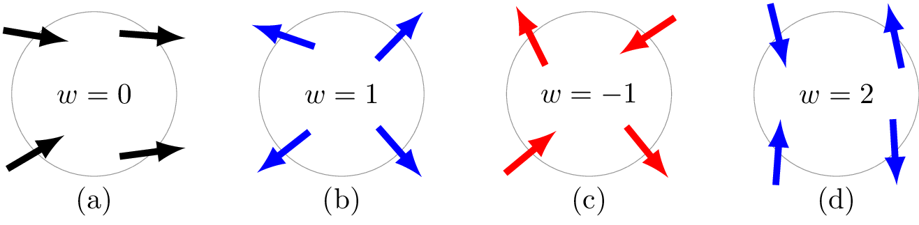 Spin vector white circle. Machine learning topological defects
