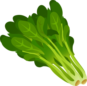 Spinach clipart. Spanish fruit vegetables espa