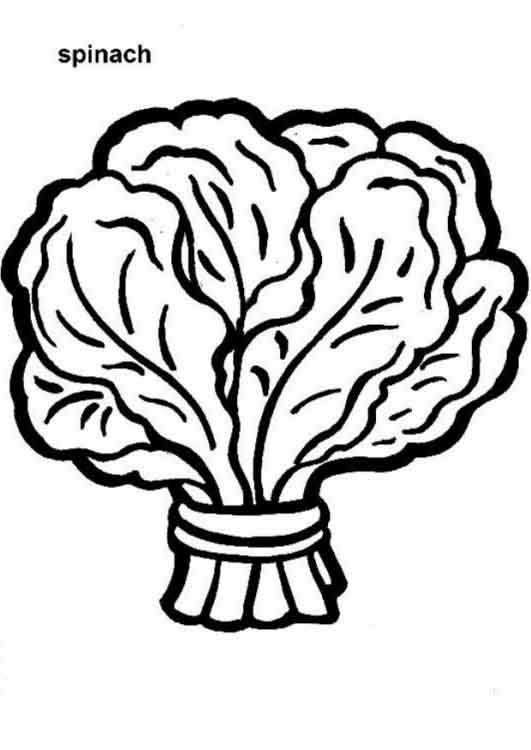 Spinach clipart black and white. Better of letter master