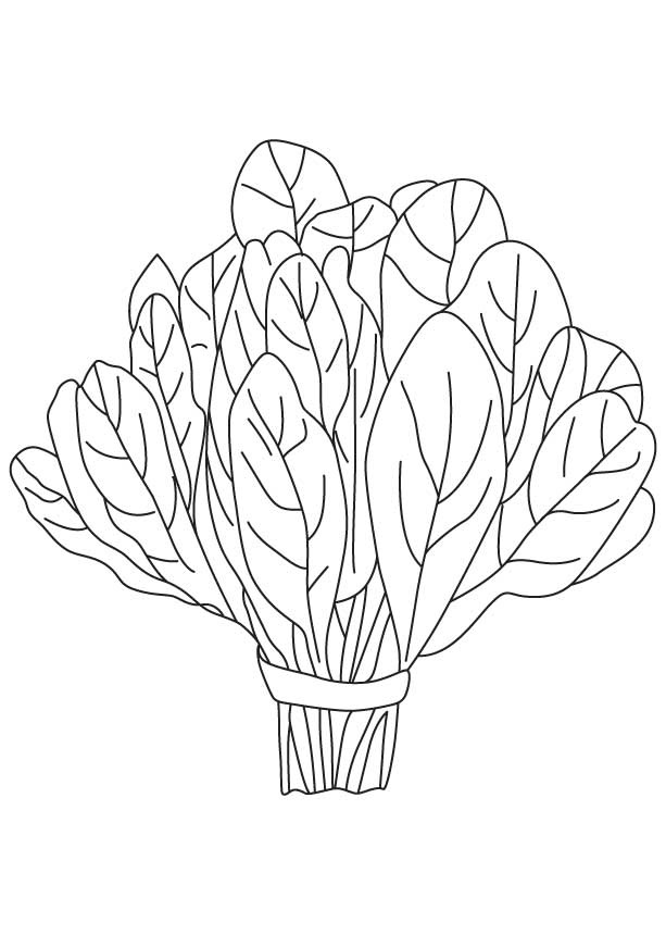 Spinach clipart black and white. Letters jpg clipartix
