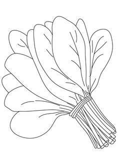 Spinach clipart black and white. Letters format leaf vegetable