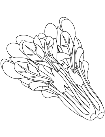 Spinach clipart black and white. Coloring page free printable