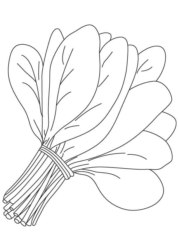 Spinach clipart black and white. Vegetables free download clip