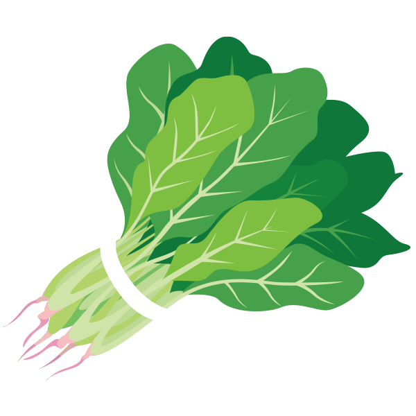 kale vector water spinach