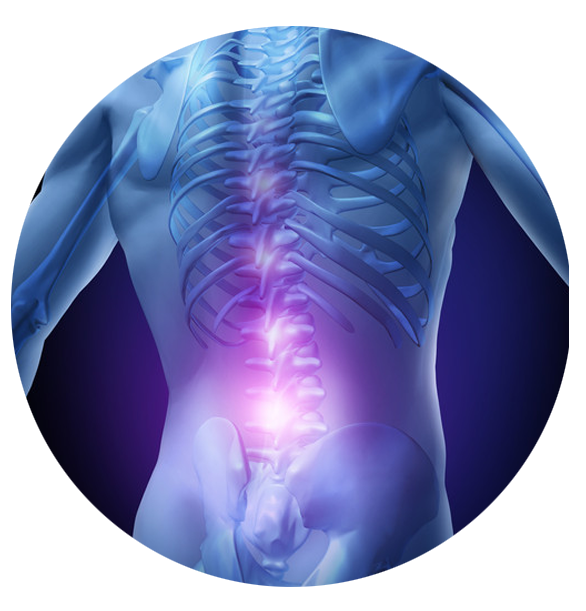 Spine back png. Low pain riverside physical