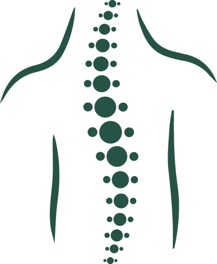 Spine clipart back bone. Chicago spinal cord injury