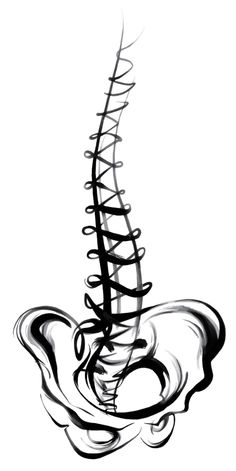 Spine clipart black and white. Free download best on