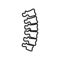 Vector spine. Icons noun project
