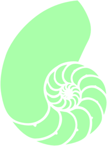 Green clip art at. Spiral clipart shell nautilus vector black and white