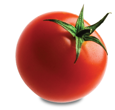 Splat transparent tomato ketchup. Png images all