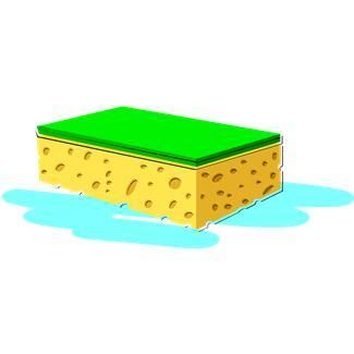 Sponge clipart water. In this activity learners