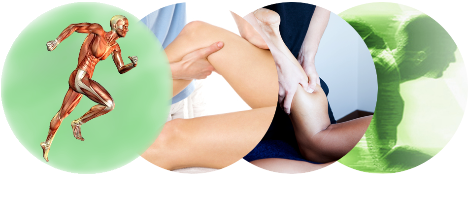 Sports massage png. Olive therapy