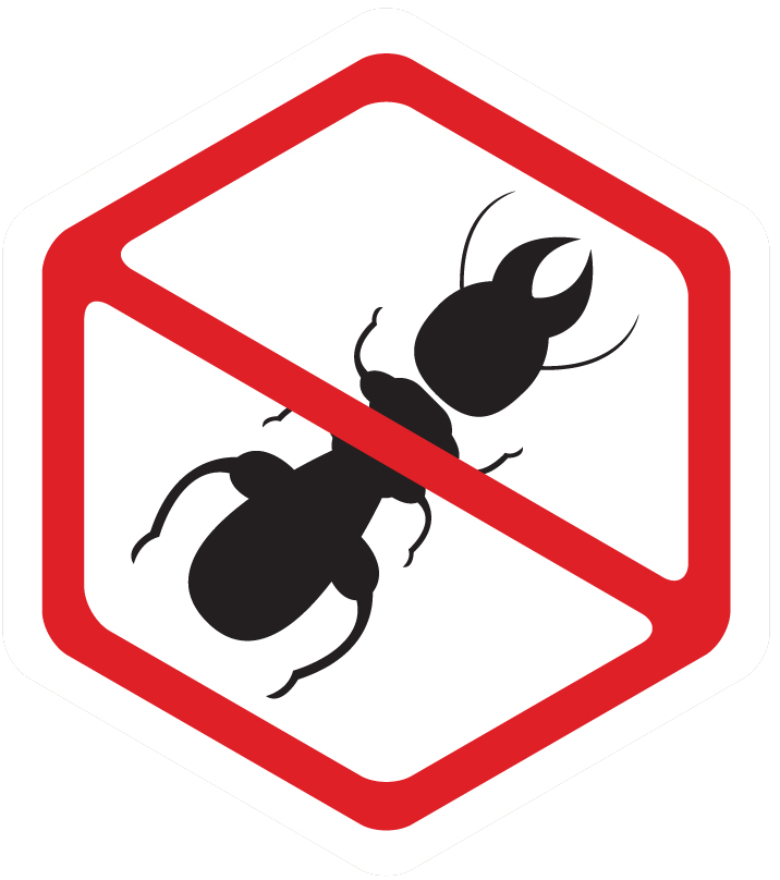 Spray clipart insecticide spray. General services affordable pest