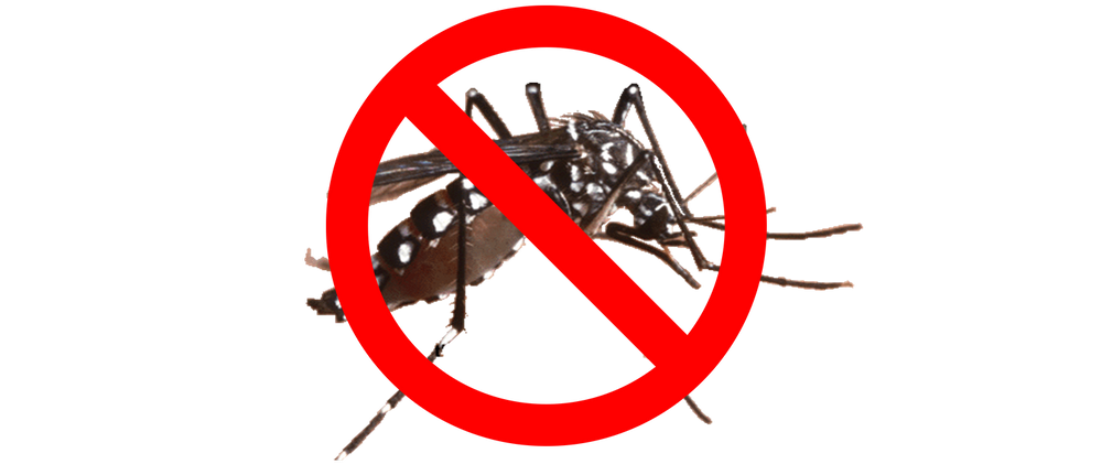 Spray clipart insecticide spray. Mosquito barrier stop