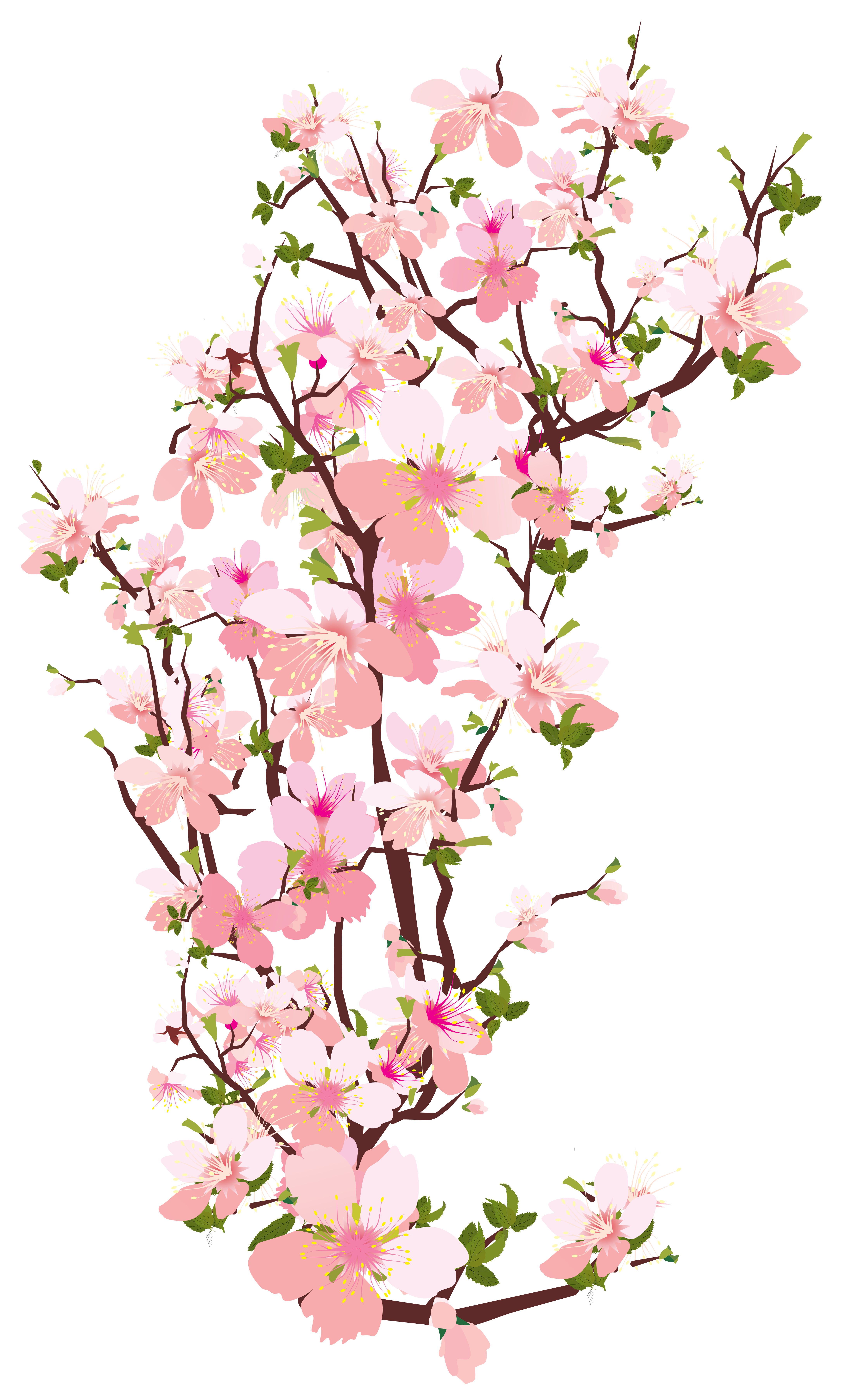 Spring art png. Tree branch transparent clip
