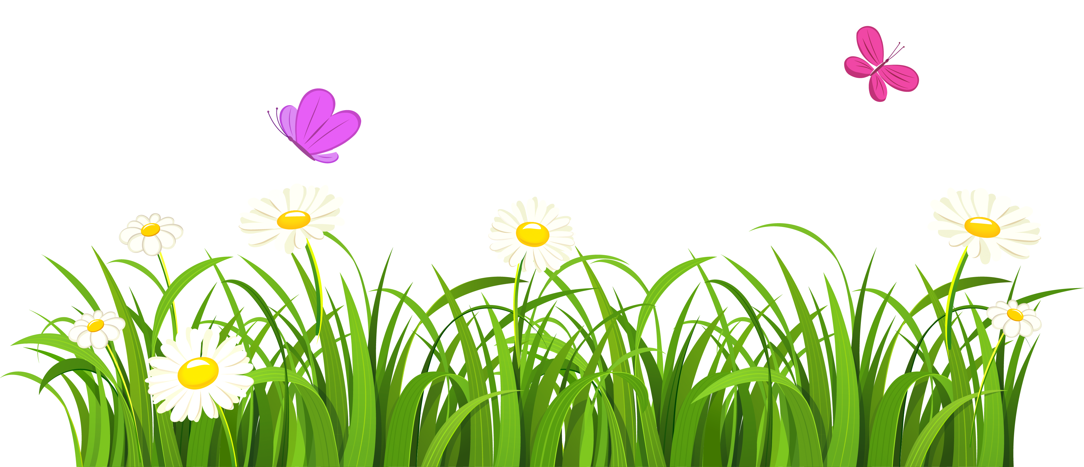 Garden vector png. Grass and butterflies clipart