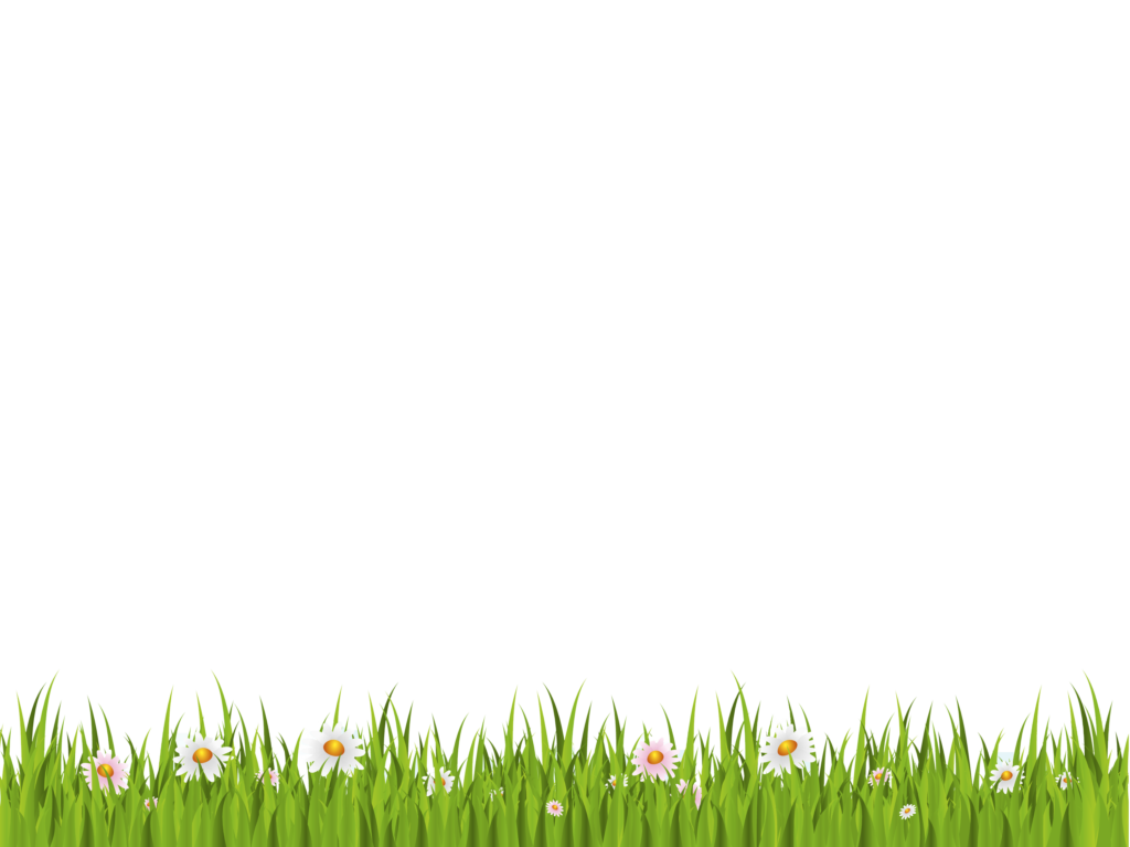 vector hd green background