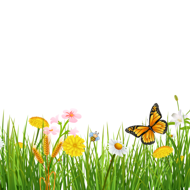 Beautiful backgrounds png. Spring grass with butterflies