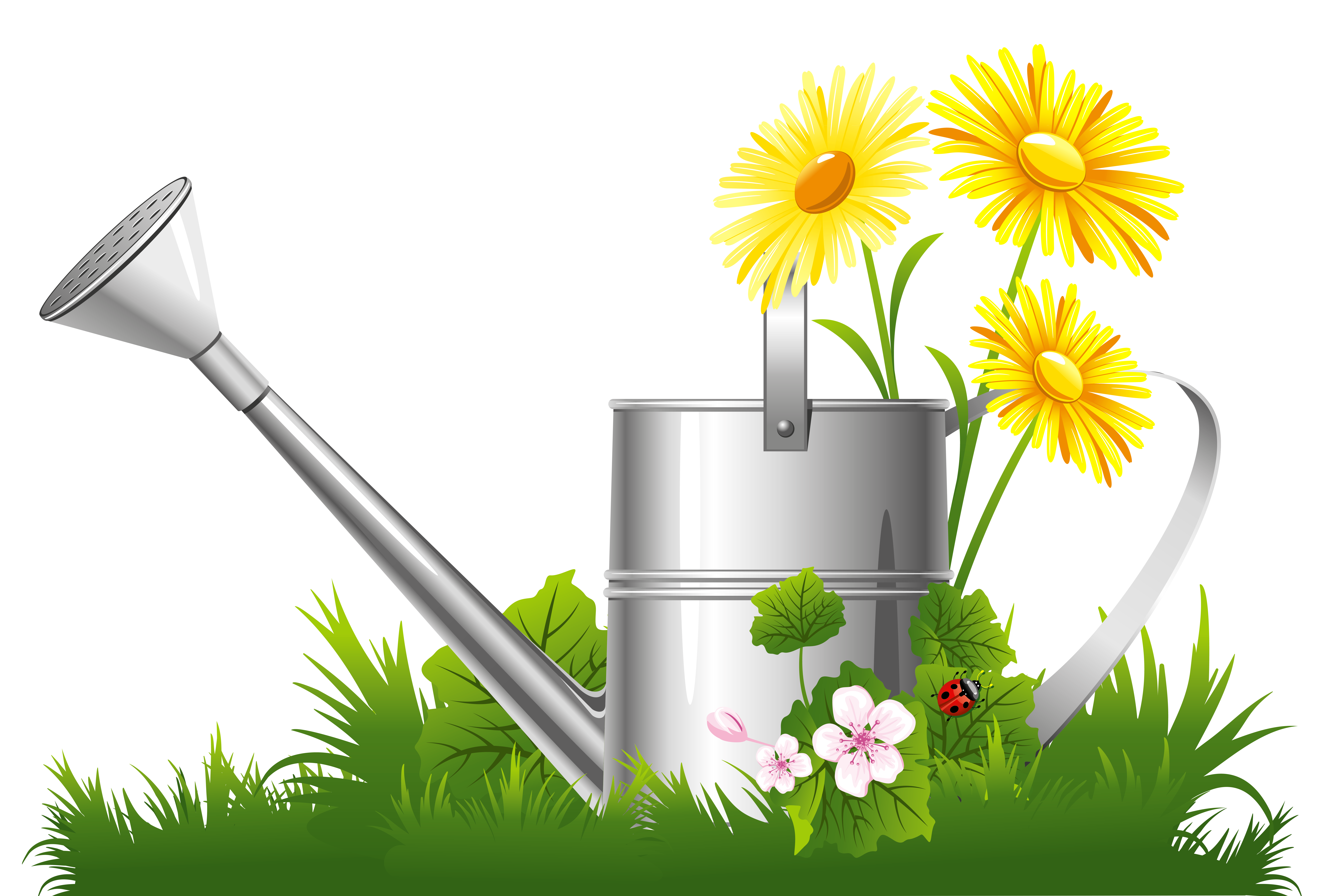 Decoration with water can. Nature clipart spring svg stock