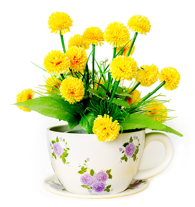 Spring clipart tea. Flower pictures flowers in
