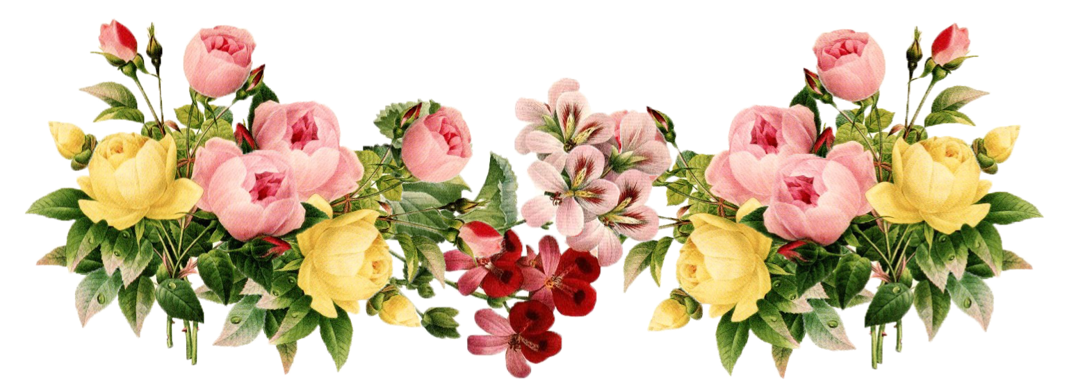 Spring flower border png. Transparent pictures free icons