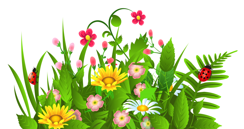 spring flowers vector png