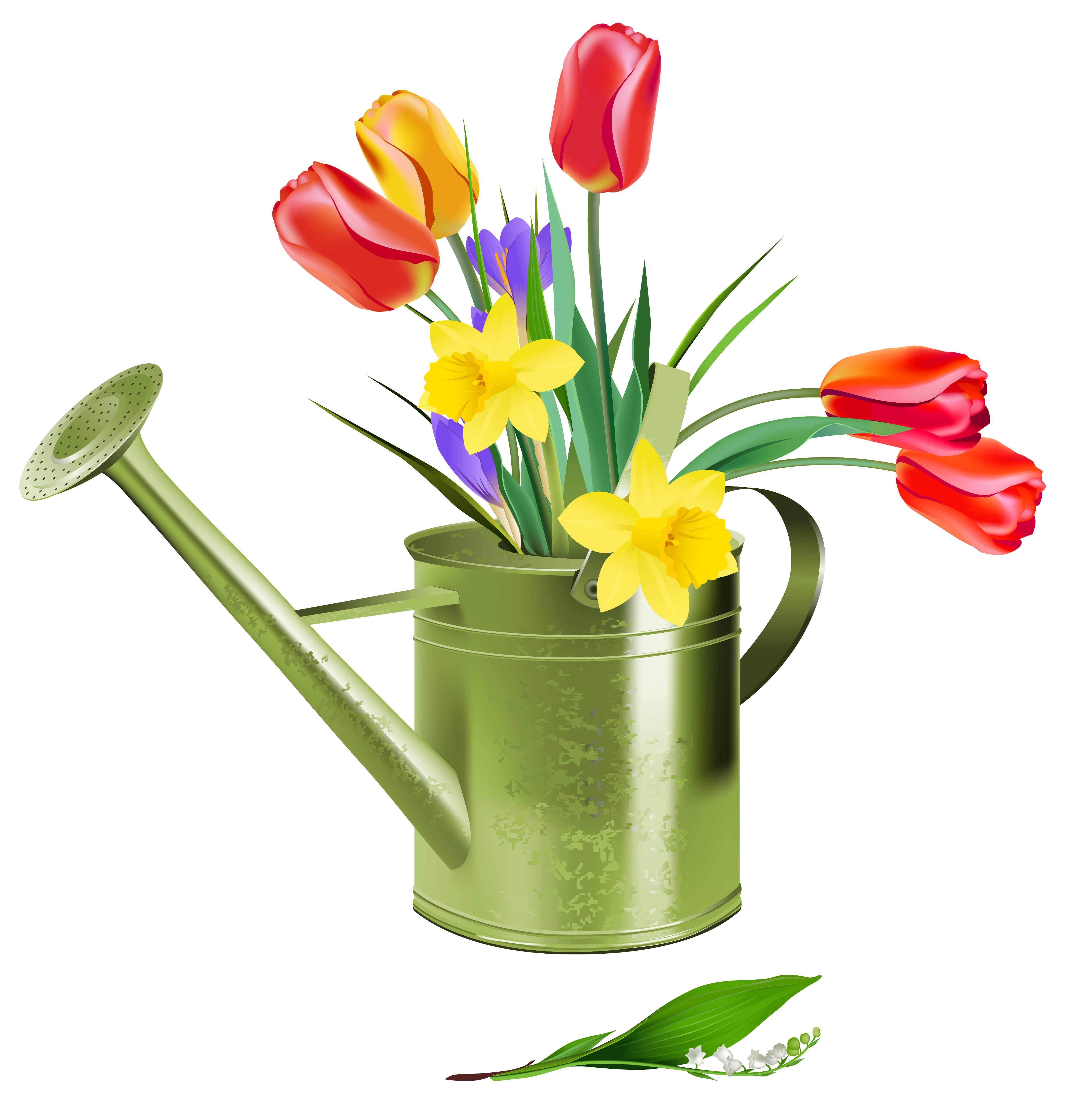 Spring flower clipart png. Green watering can with