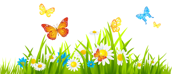 Spring flowers border png. Grass ground with and