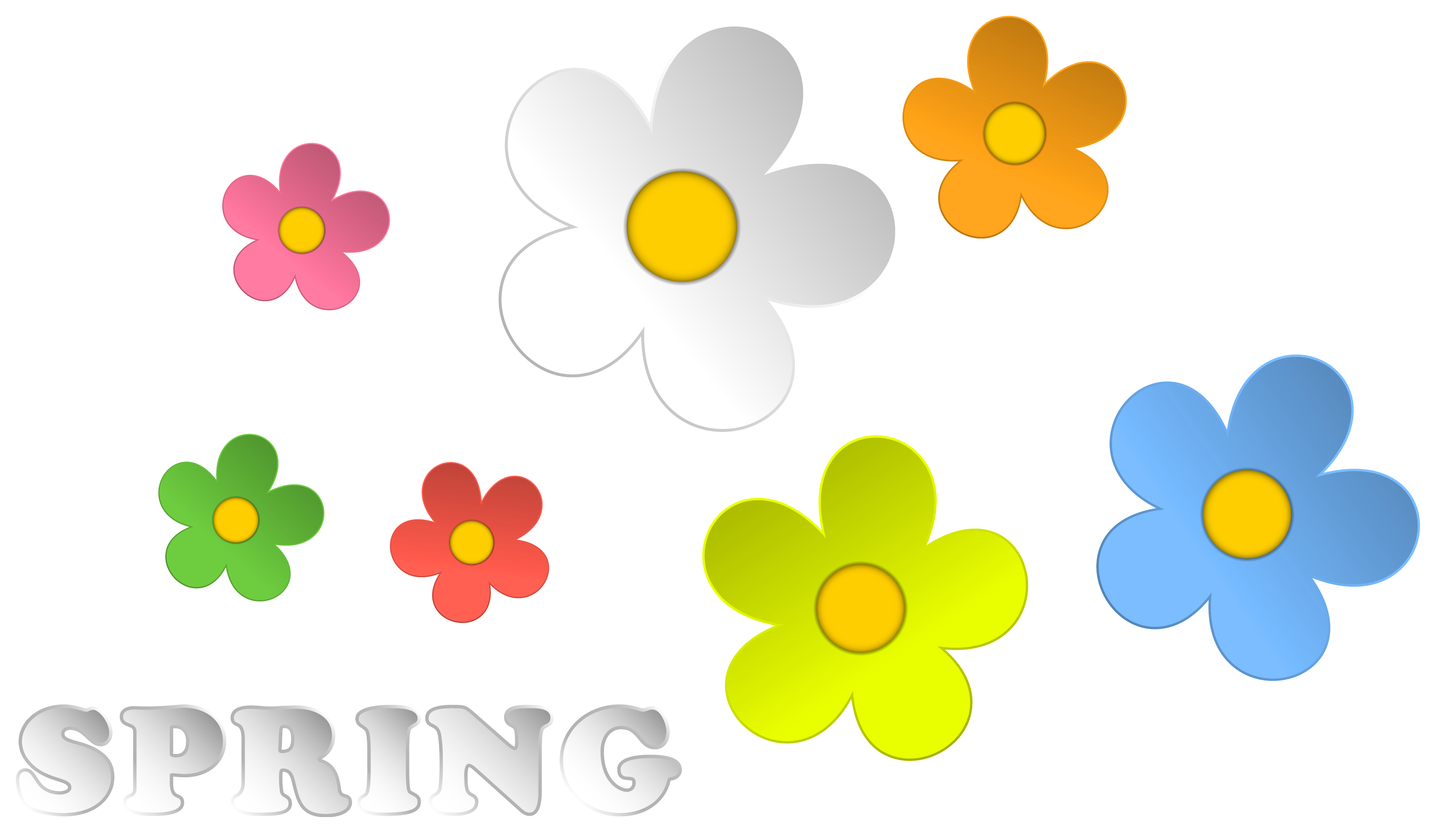 Clip spring picture frame. And flowers decor png